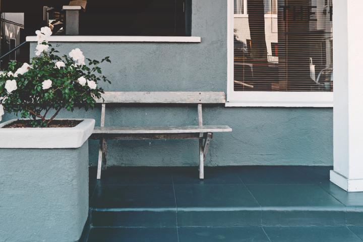 krzew róży i ławeczka przed domem