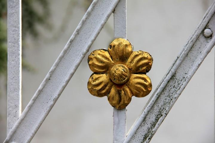 złoty kwiat, medal na bramie