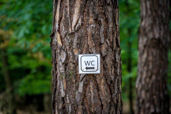 tabliczka wc na drzewie