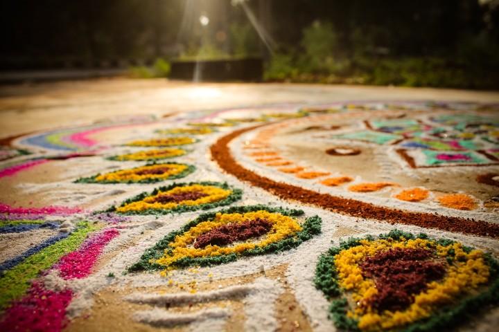 kolorowy dywan kwiatów na hinduskim festiwalu kol,orów