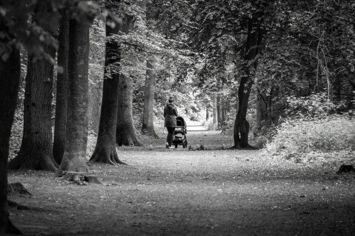 kobieta z wózkiem na spacerze w lesie