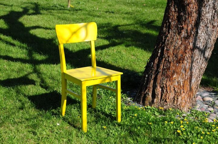 żółte krzesło stojące na zielonej trawie pod drzewem