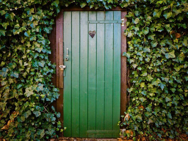zielone, drewniane drzwi toalety